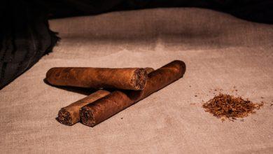 Какие выбрать сигары в подарок
