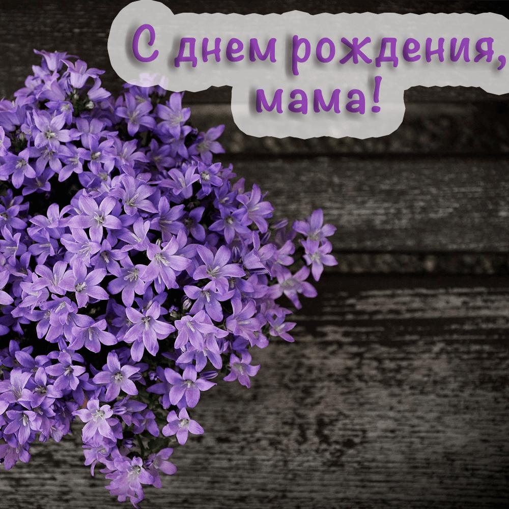 Сочная фото-открытка маме