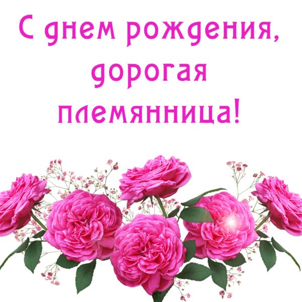Поздравительная открытка племяннице с цветами