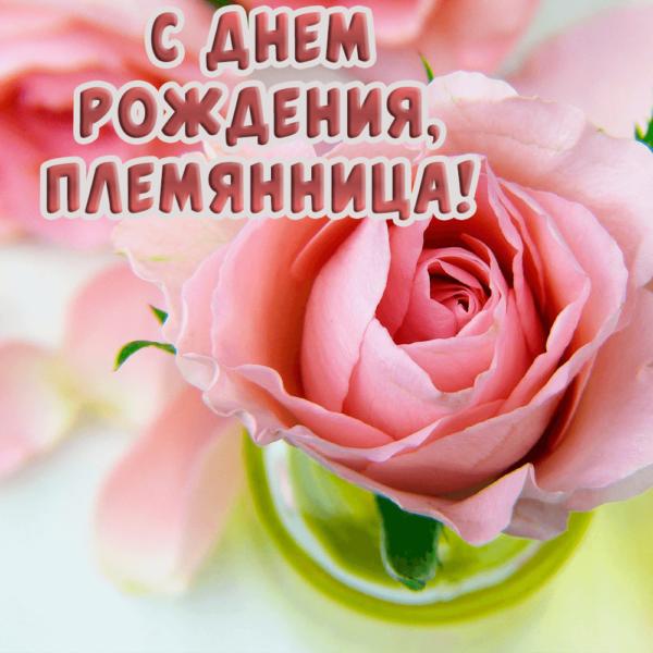 Красочная поздравительная открытка для племянницы
