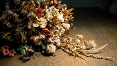 Можно ли дарить сухоцветы