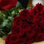 Цветы в знак примирения