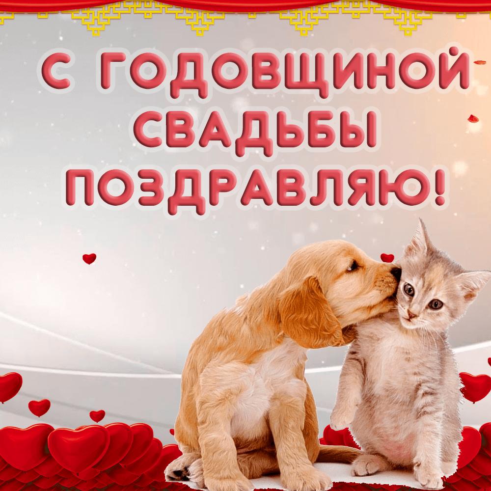 Прикольная открытка с собачкой и кошкой на годовщину свадьбы