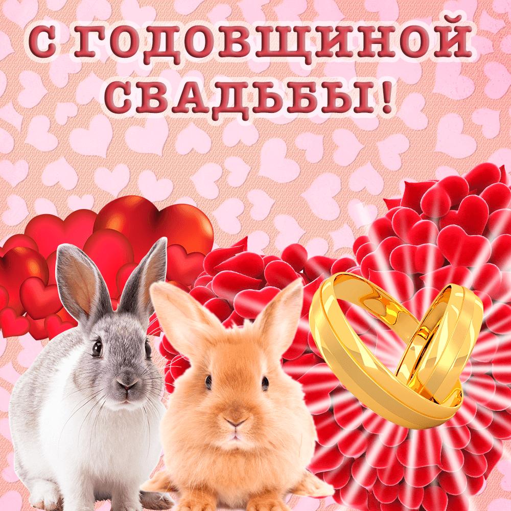 Прикольная открытка с милыми кроликами