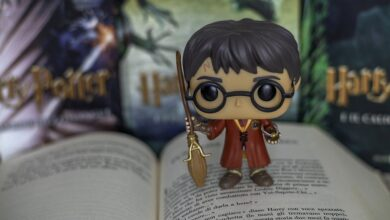 Что подарить любителю Гарри Поттера
