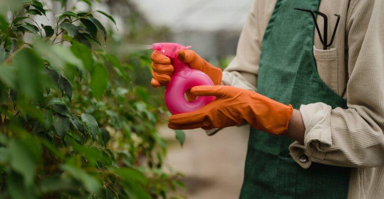 Что подарить садоводу
