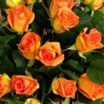 К чему снится дарить цветы умершему