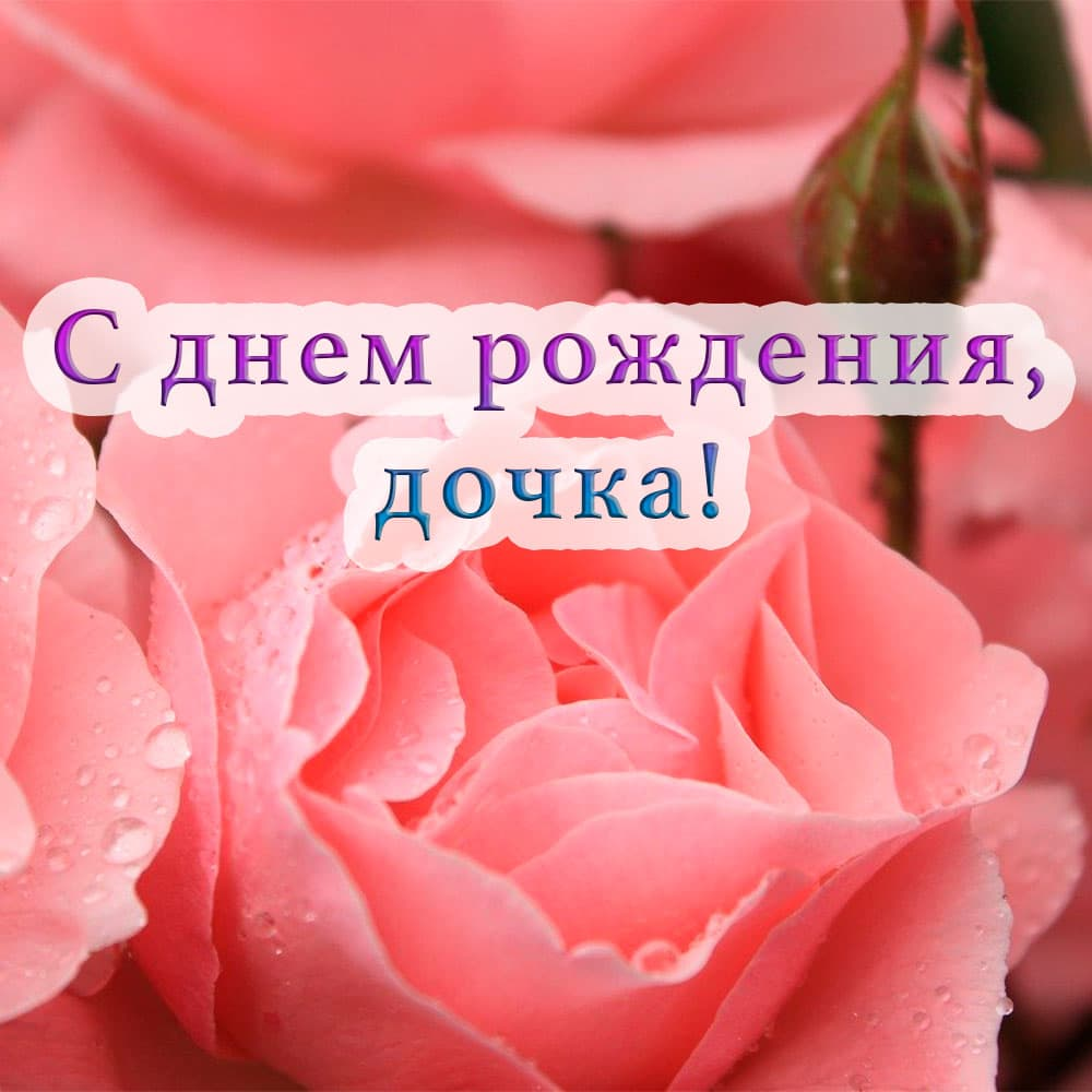Открытка дочери на фоне роз