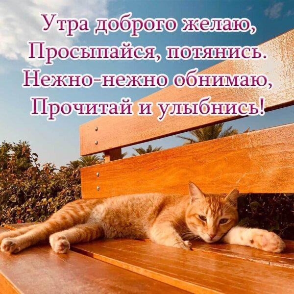 Желаю тебе доброго утра!