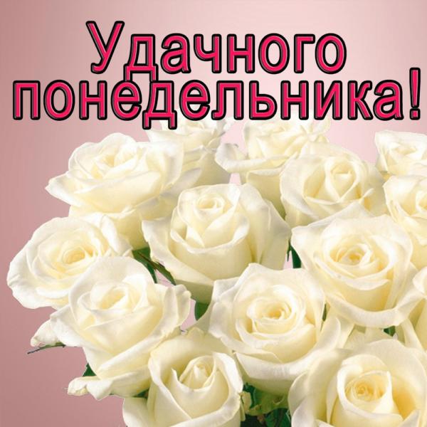 Букет красивых белых роз