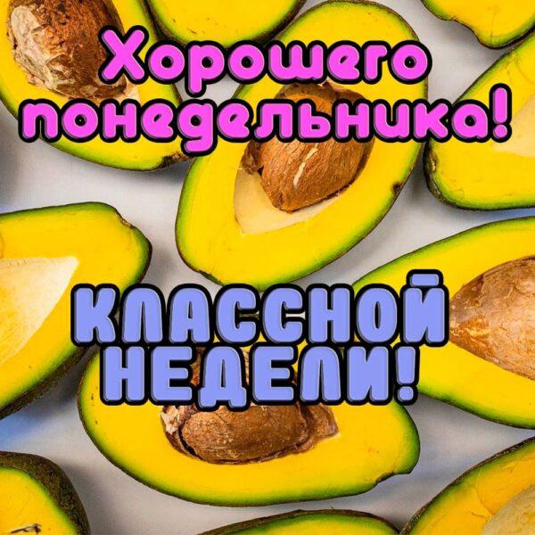 Сочная открытка с авокадо