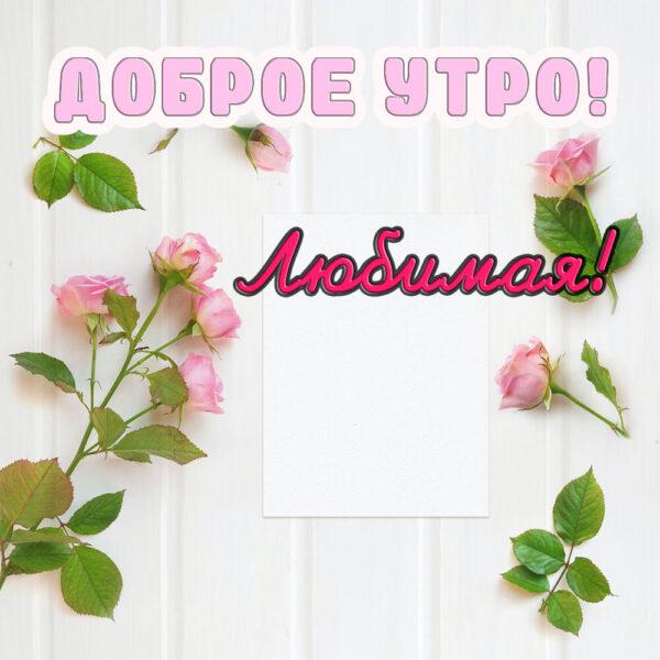 Позитивная открытка на утро