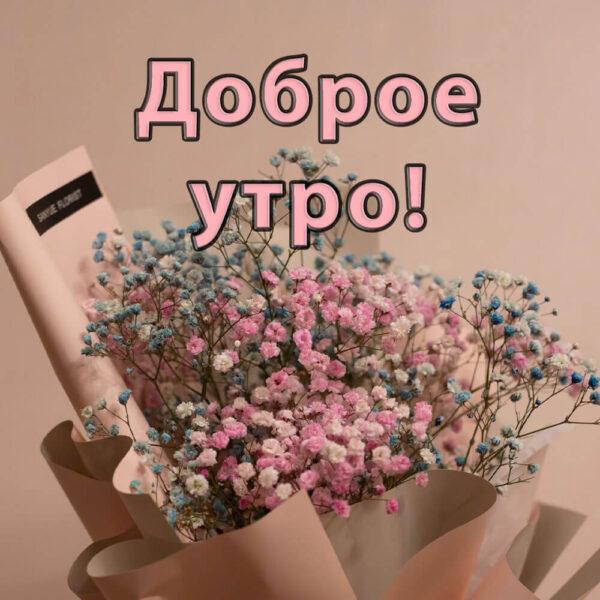 Цветы и утреннее пожелание