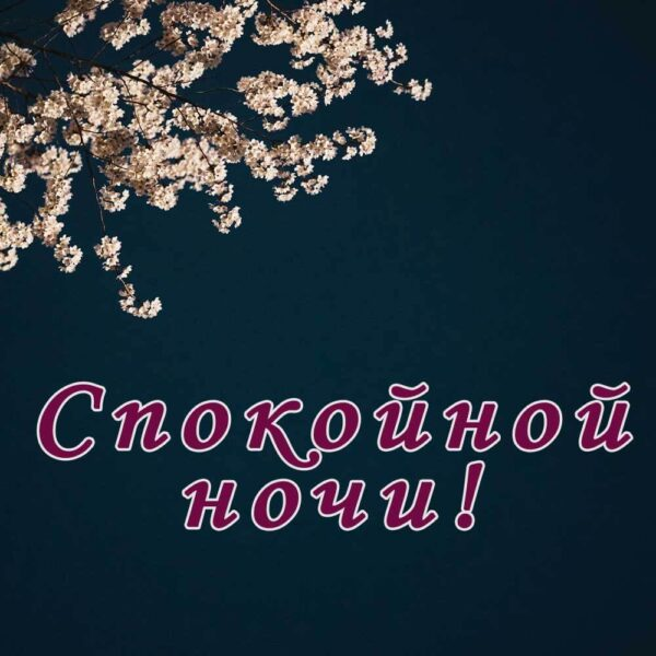 Красивая открытка на ночь женщине