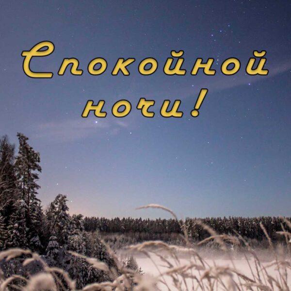 Красивая открытка с интересной природой