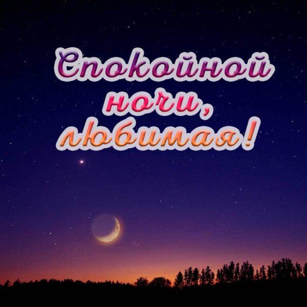 Спокойной ночи тебе, любимая!