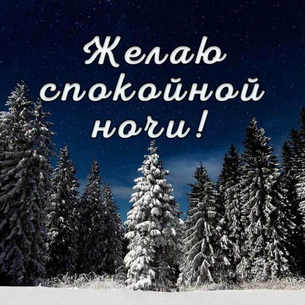 Красивая зимняя открытка на ночь