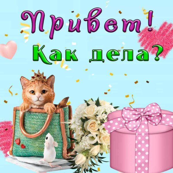 Милая открытка с кошечкой
