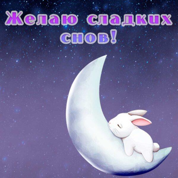 Нежный кролик на открытке-пожелании сладких снов