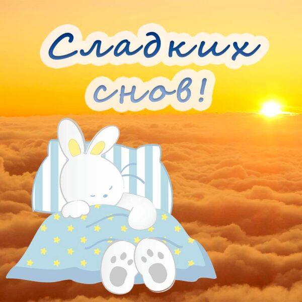 Зайчик уснул и желает сладких снов