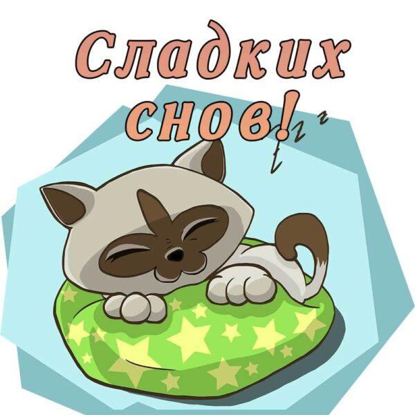 Пожелание с котенком сладкого сна