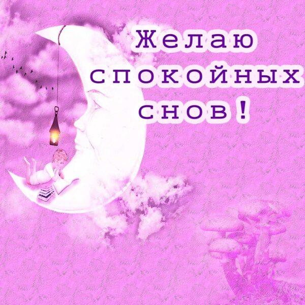 Желаю тебе спокойных снов и отдыха
