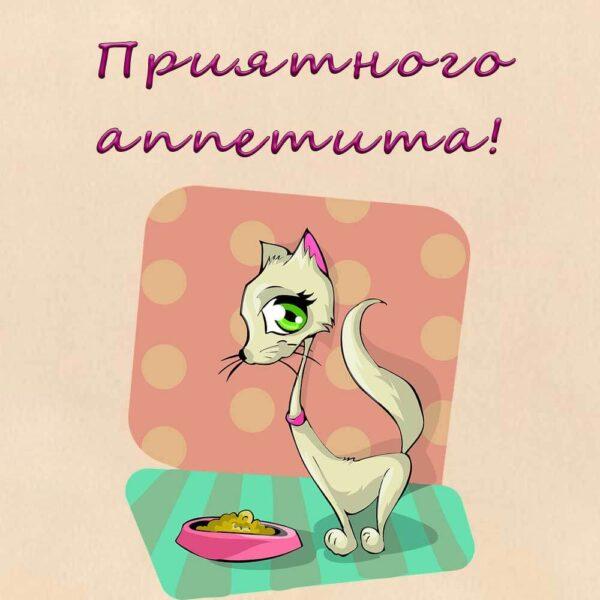 Открытка с кошкой приятного аппетита